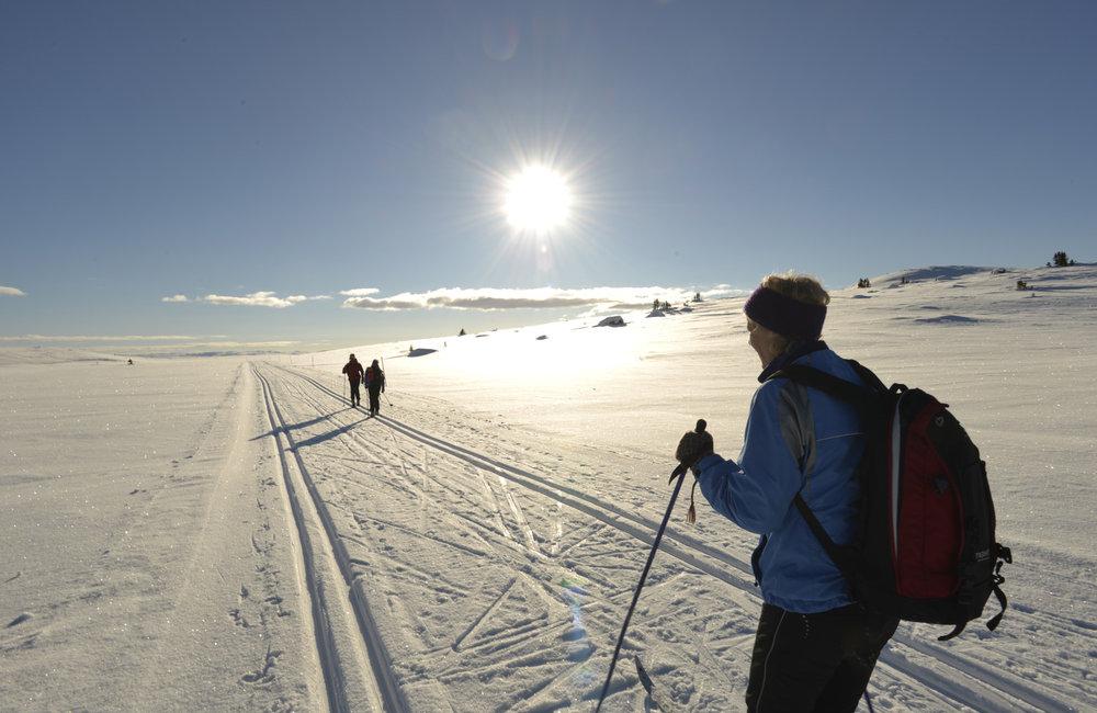Fra løypetraseen for Geir Schaus's Hallingsprett, Ål i Hallingdal. Foto Ole Johs. Brye.   - © Kari Grete Kleivstøl, Ål Turistinformasjon