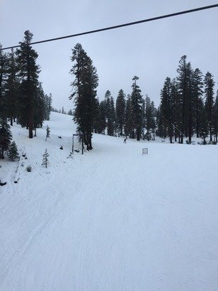 I asked one of the lift operators, they said they are hoping to get backside open next week. Fun time today. Powder up top. Wet at bottom.