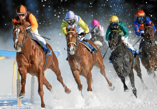 swiss-image.ch/ Andy Mettler - © White Turf St. Moritz - International Horse Races on Snow since 1907