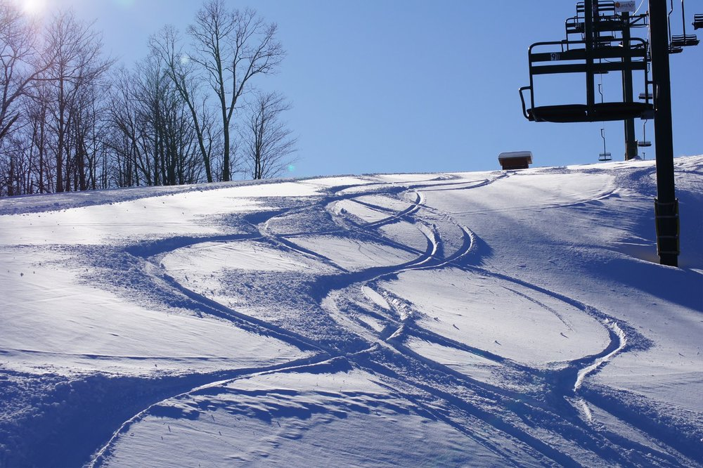 Powder tracks at Blackjack Resort. - © Blackjack Ski Resort