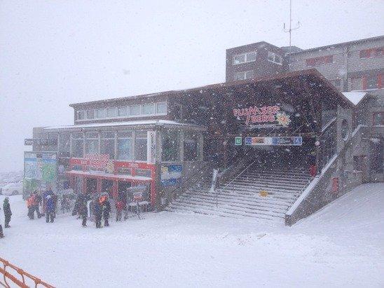 Snow, wind! A fun day skiing.