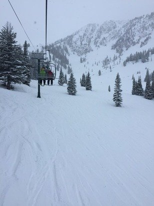 "Great soft snow today. 8"" total"