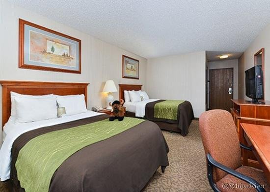 Comfort Inn Buffalo Bill Village