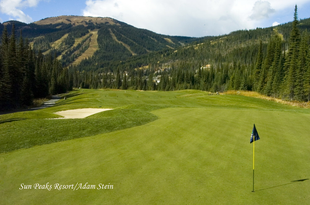 Golf course green and sandpit at Sun Peaks