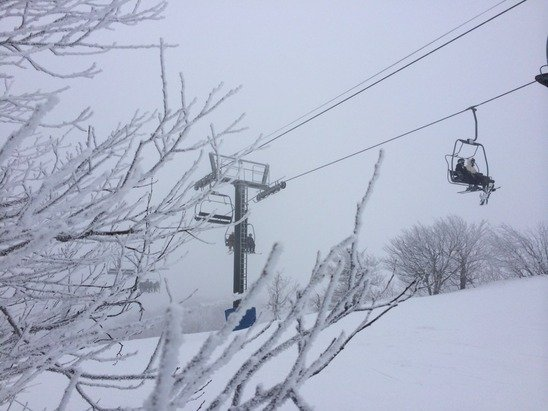 Snow all day today, 100% open, powder conditions, mid teens