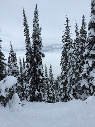 Wet heavy snow everywhere, first time in Revelstoke and all in all a good day of riding despite rain and spring like conditions.