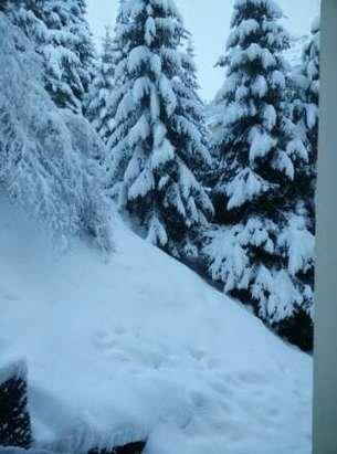 neige toute la nuit