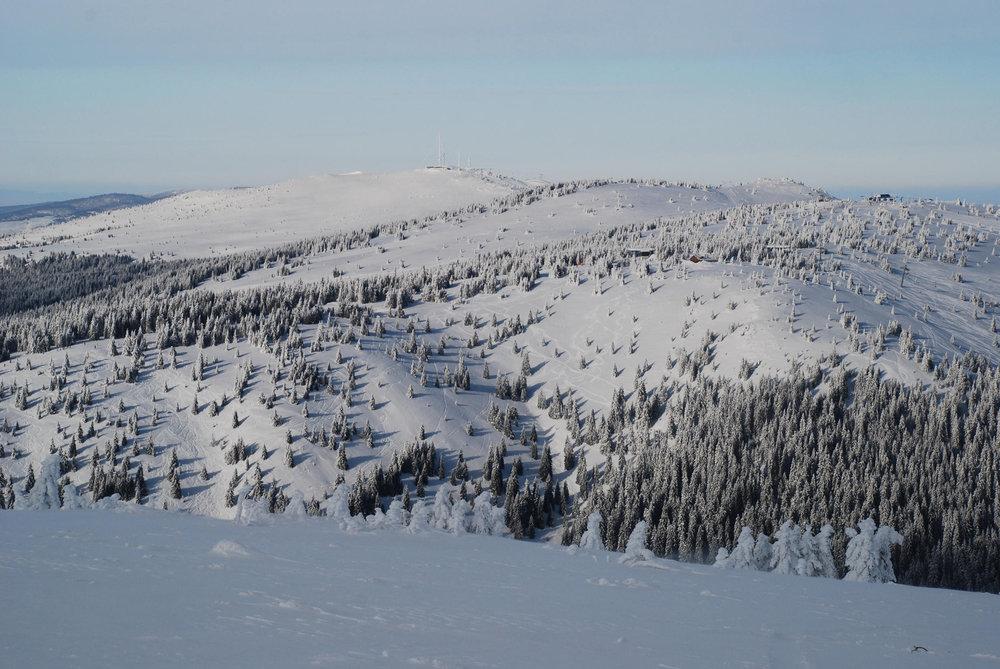Blick vom Pancicev Vrh zur Velika Gobelja (1923 m)  - © Christoph Schrahe