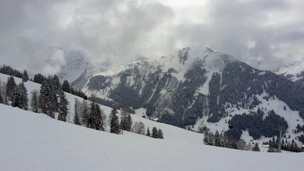 Neve fresca, ma piste non battute... una sofferenza per le gambe