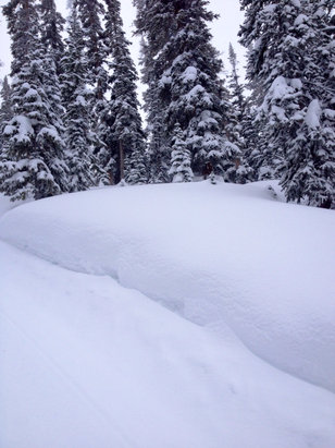 "Crested Butte Mountain Resort - Waist deep in the extremes! ""You just got to poke around..."" Get some!  - © Bdubs"