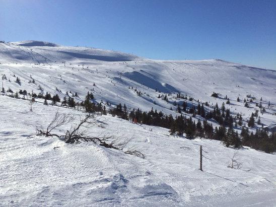 Trysil - Påskestemning; tidvis isete og hardt, me stort sett gode snøforhold i preparerte løyper.  - © Espen