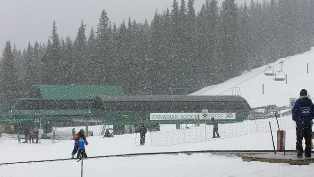 Marmot Basin - It's snowing! Great conditions top to bottom. Powdery up top, softer groomers down lower.  - © erin.reade
