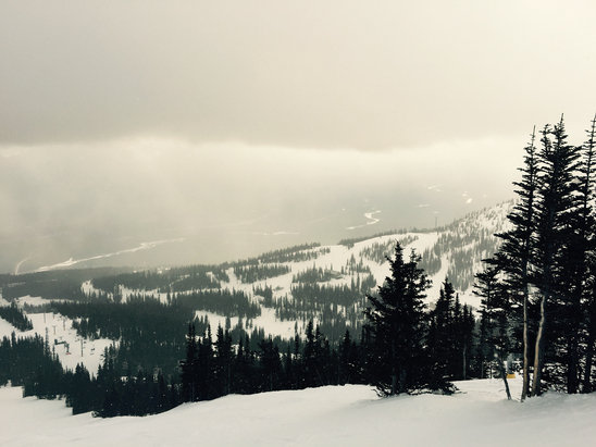 Marmot Basin - Great spring conditions  - © michael's iPhone