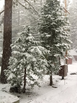 Homewood Mountain Resort - It be a white wonderland of pure joy.  - ©Devon IPhone