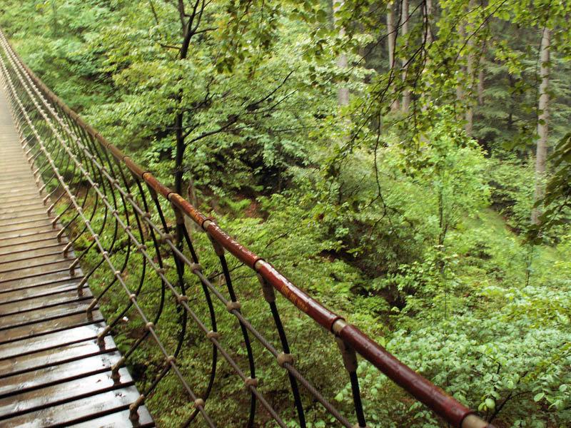 Rothaarsteig Hängebrücke - © flickr_froutes