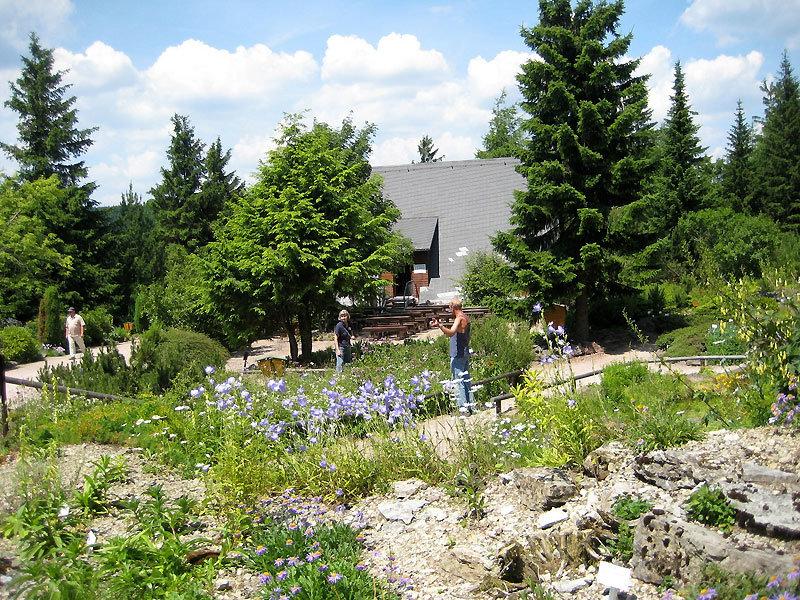 Rennsteiggarten in Oberhof - © mjk23