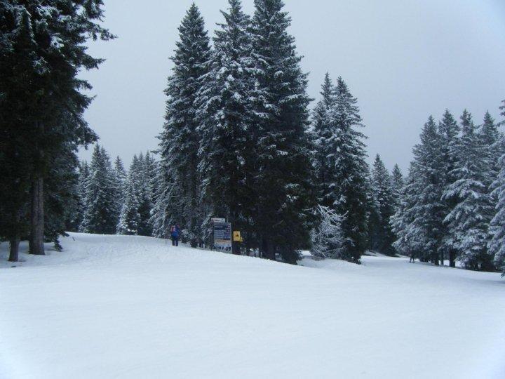 Feldberg Wintersportzentrum - ©Yota @ Skiinfo Lounge