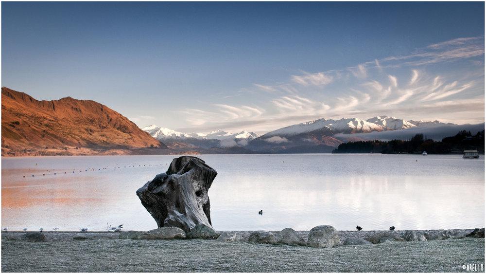 Kontrastreiche Landschaft in Neuseeland - © Oreli B.