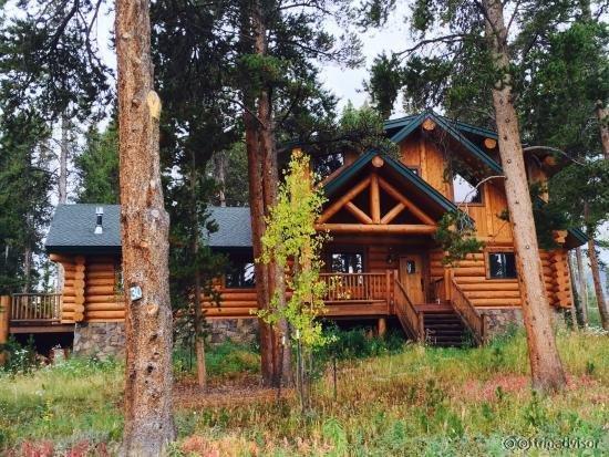 The Bear Cabin