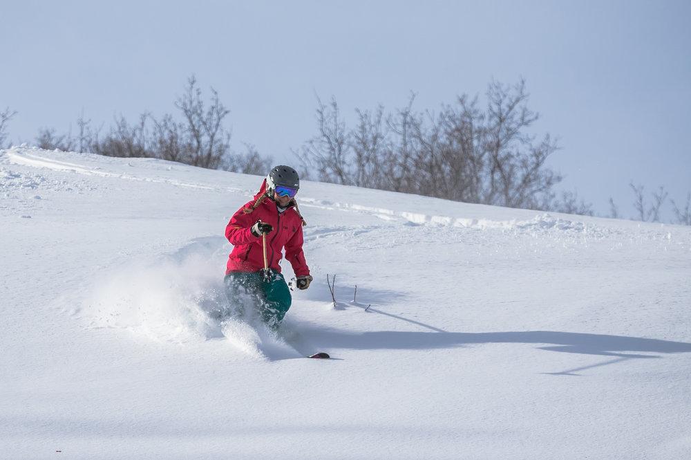 Testing powder at Cherry Peak, Utah's newest ski resort. - © Cherry Peak