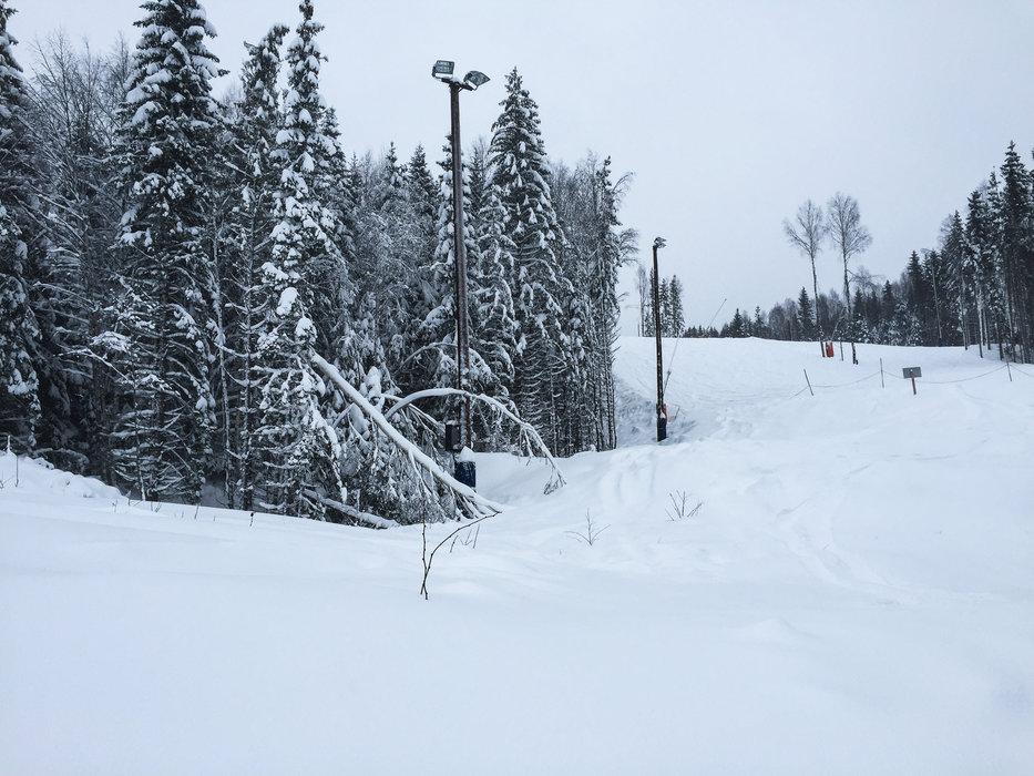 En sjelden gang dumper det i Oslo Vinterpark - i dag var en av de dagene! - © Eirik Aspaas