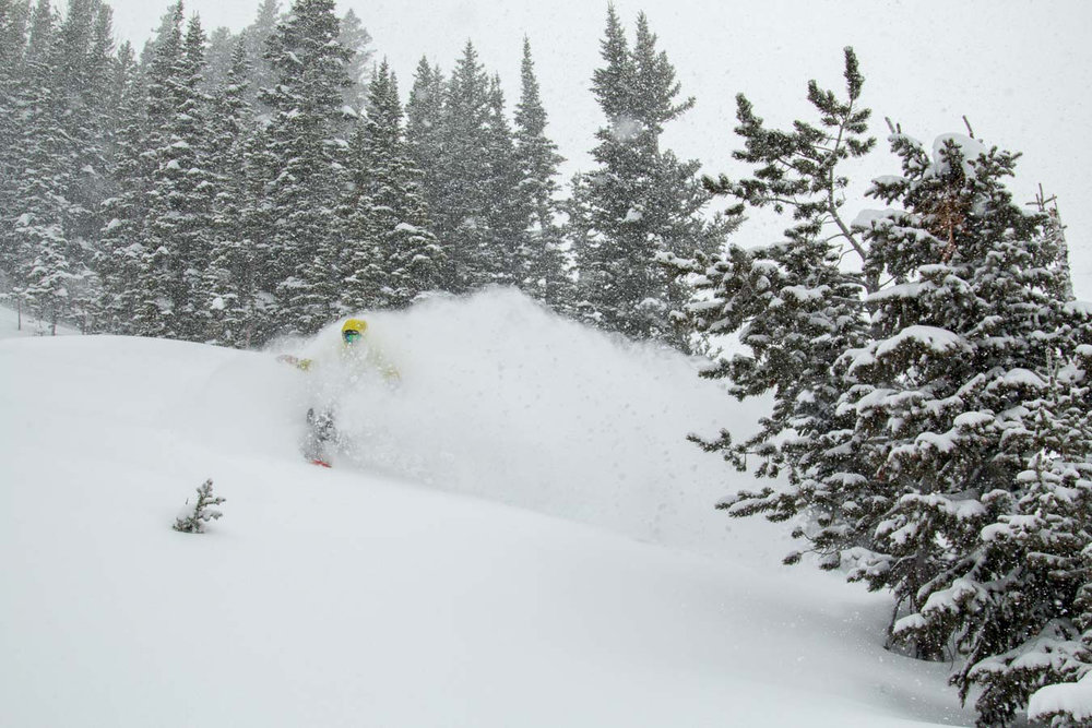 Catching powder face shots at Jackson Hole Mountain Resort pre-MLK weekend 2016. - © Jackson Hole Mountain Resort