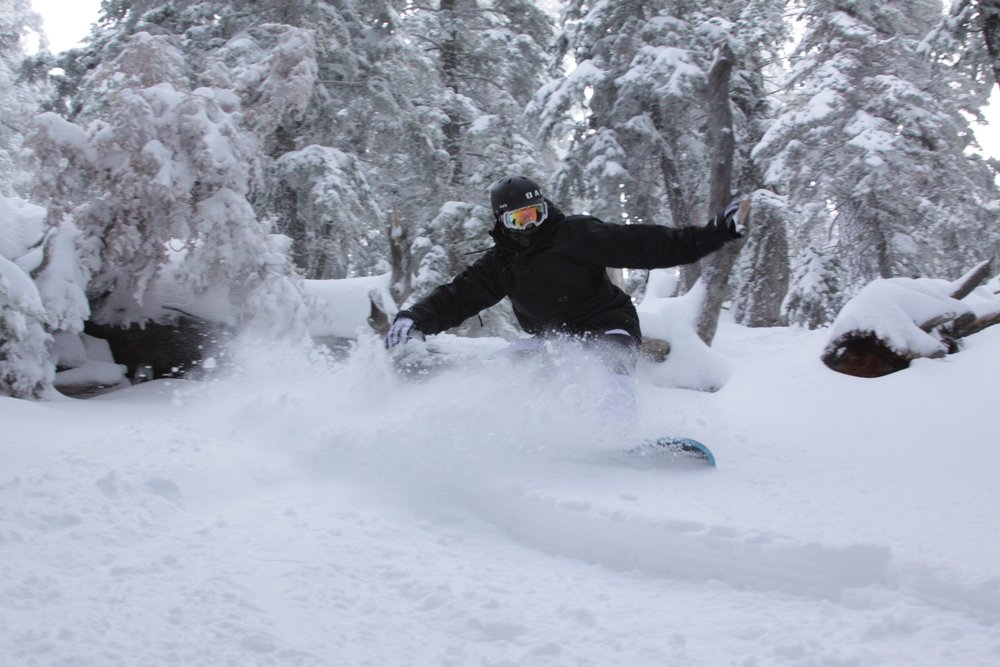 Shredding the powder at Mountain High. - © Mountain High