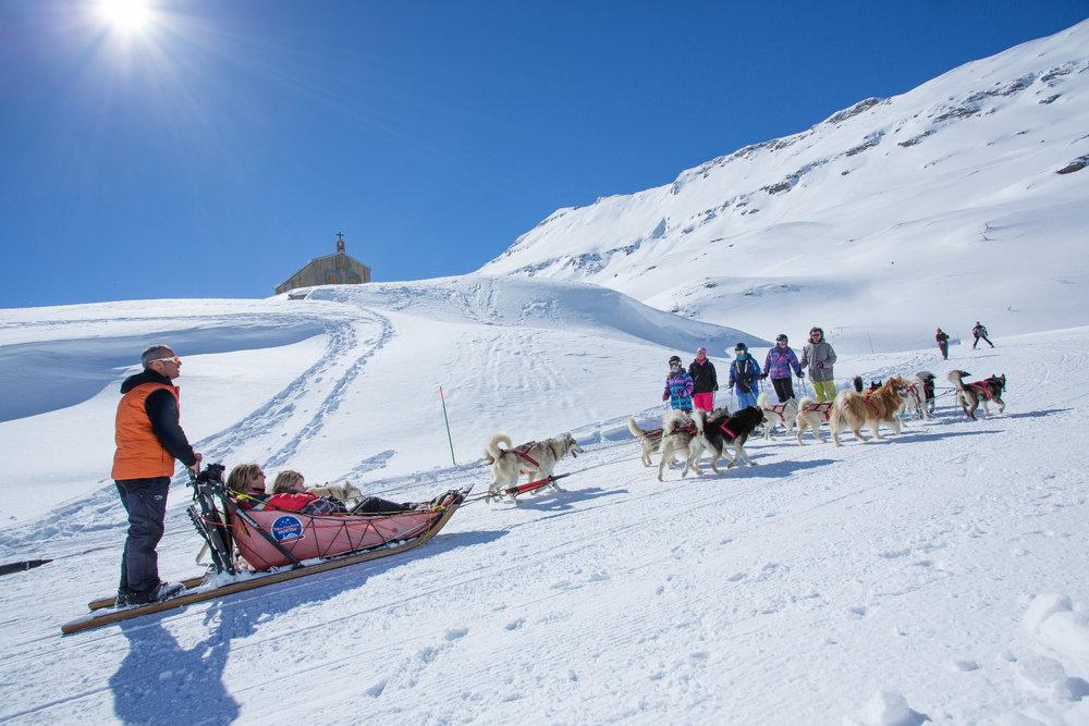 Sortie en chiens de traîneau en direction du Col du Mont Cenis, sur les hauteurs de Val Cenis - © Daniel Durand / Fresh Influence