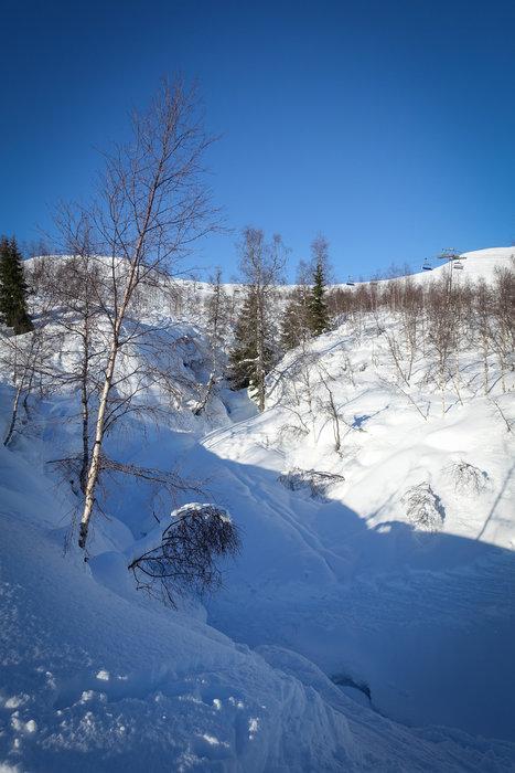 En midtuke i Myrkdalen er ikke som en vanlig midtuke. - © Eirik Aspaas