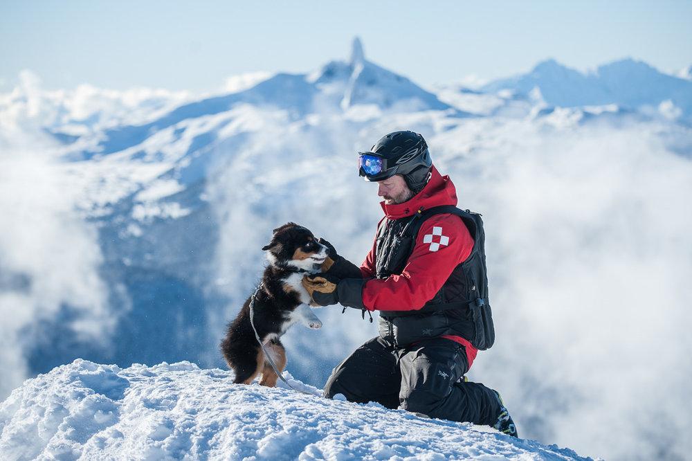 Nowy członek ekipy ratunkowej w Whistler Blackcomb - © Logan Swayze