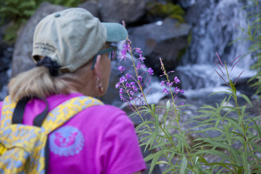 A woman stops to smell the wildflowers. - © Mammoth Lakes Tourism