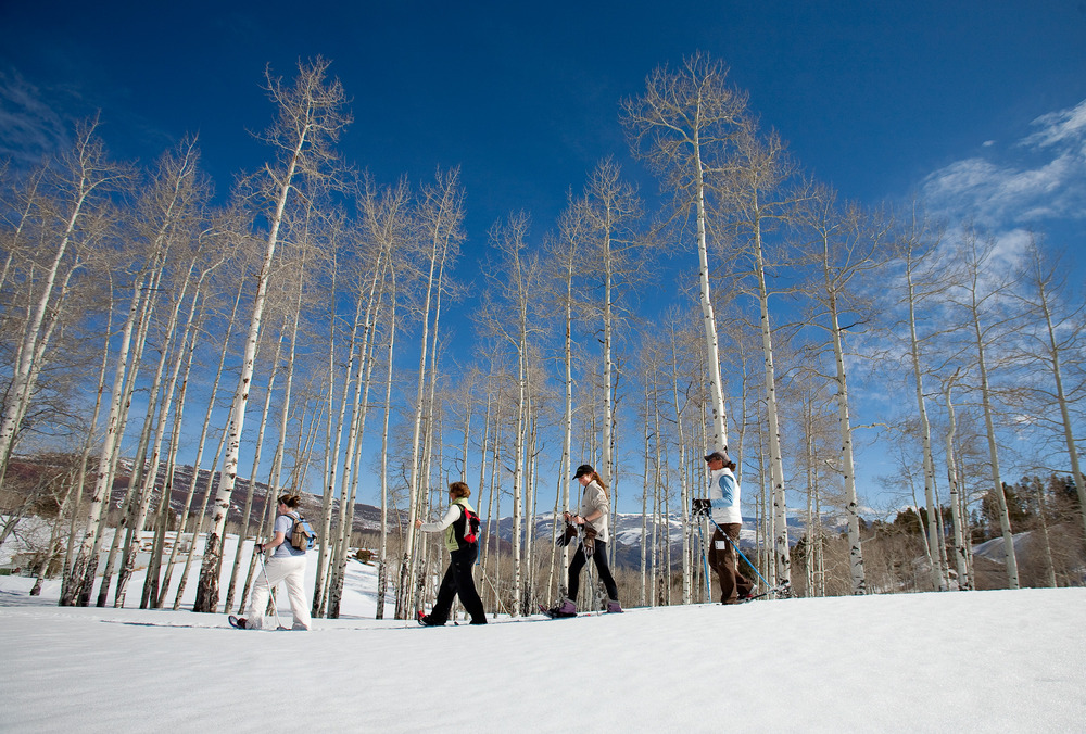 Contestants in Cordillera Snowshoe Race 2008 walking by tall winter trees