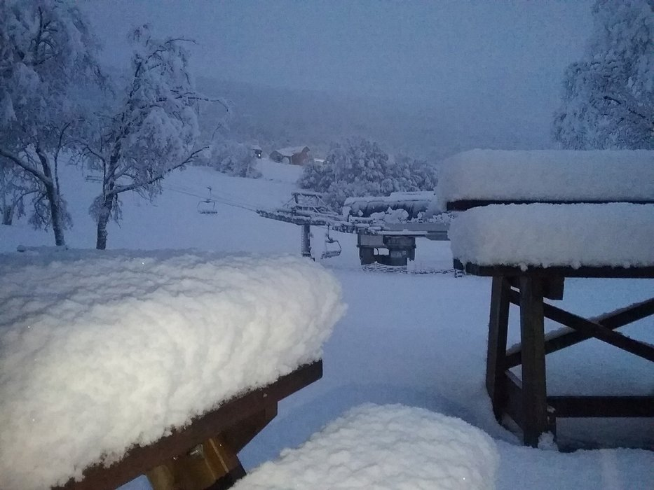 Natt til lørdag kom det 20 cm nysnø på Bjorli som gjorde at de fikk en perfekt start på sesongen. - © Bjorli Skiskole