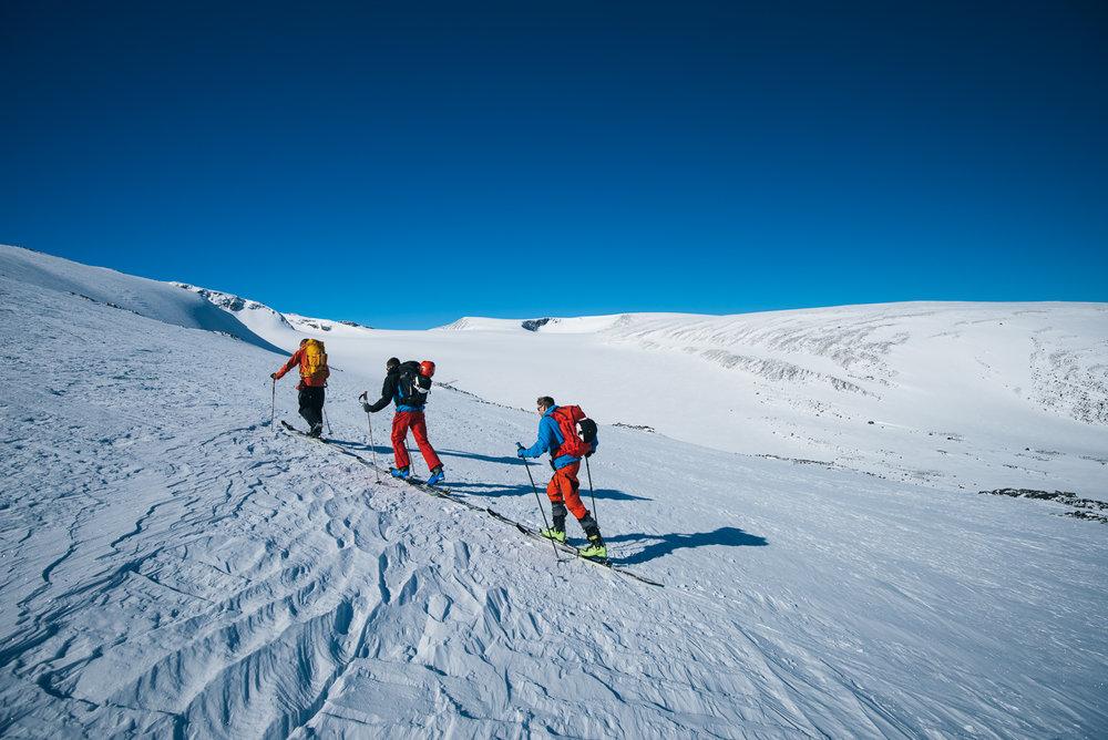 Skarejern kan være kjekt å ha på isete underlag. - © Tor Berge - Norexplore