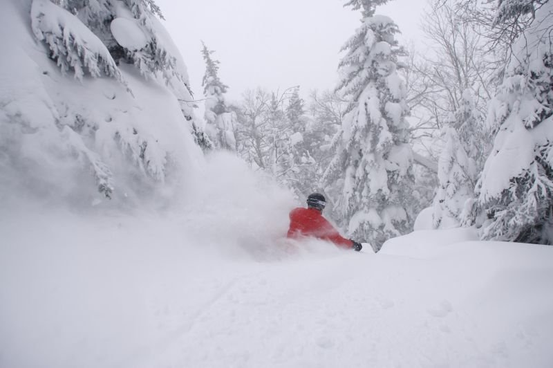 A skier finds powder in the backcountry off of Jay Peak, Vermont