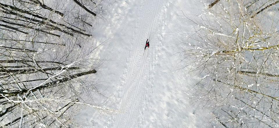Langlaufen im Bayerischen Wald - © Tourist-Information Furth im Wald