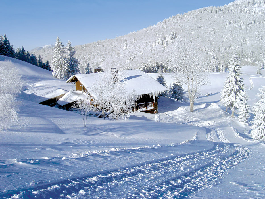 Krunkelbach-Hütte im Schnee - © TI Bernau