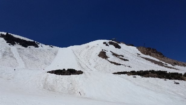 Mammoth Mountain Ski Area - So much fun for July. Soft snow, warm sun, cold beer!! - © Skunk Ape