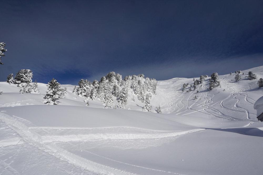Massig Neuschnee gab es im Januar im Skigebiet Hochzeiger - © Tourismusverband Pitztal