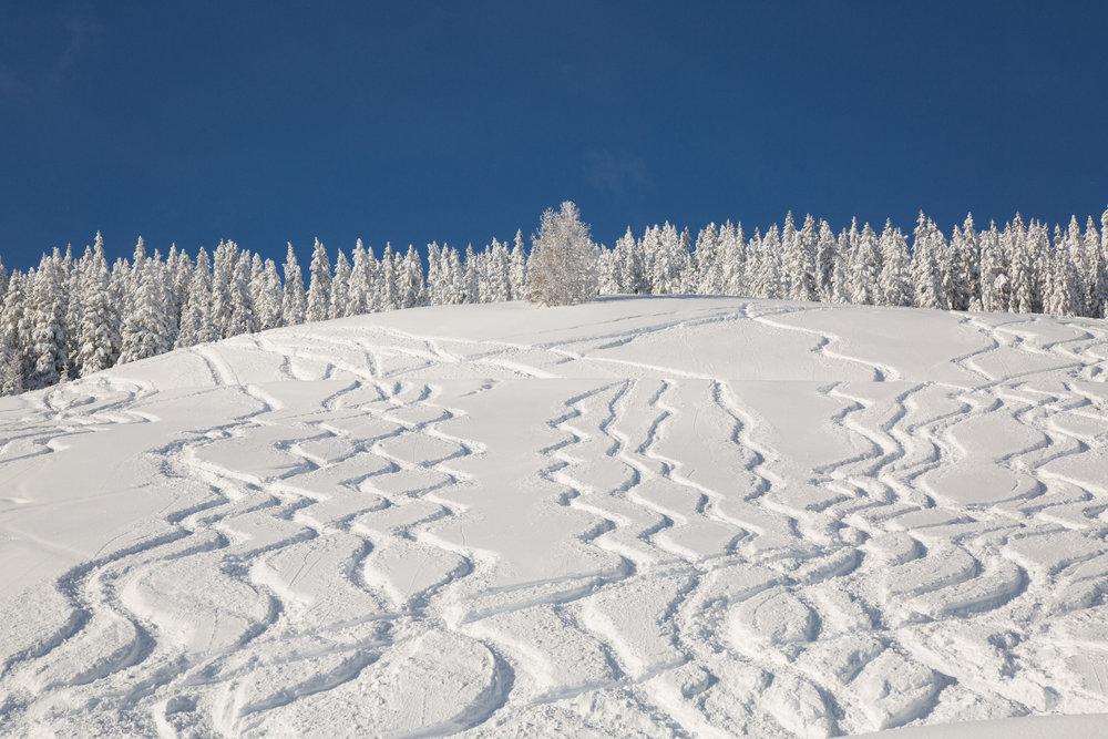 Tief verschneite Hänge locken Freerider an, die Gefahr wird aber oft unterschätzt. - © Skiinfo