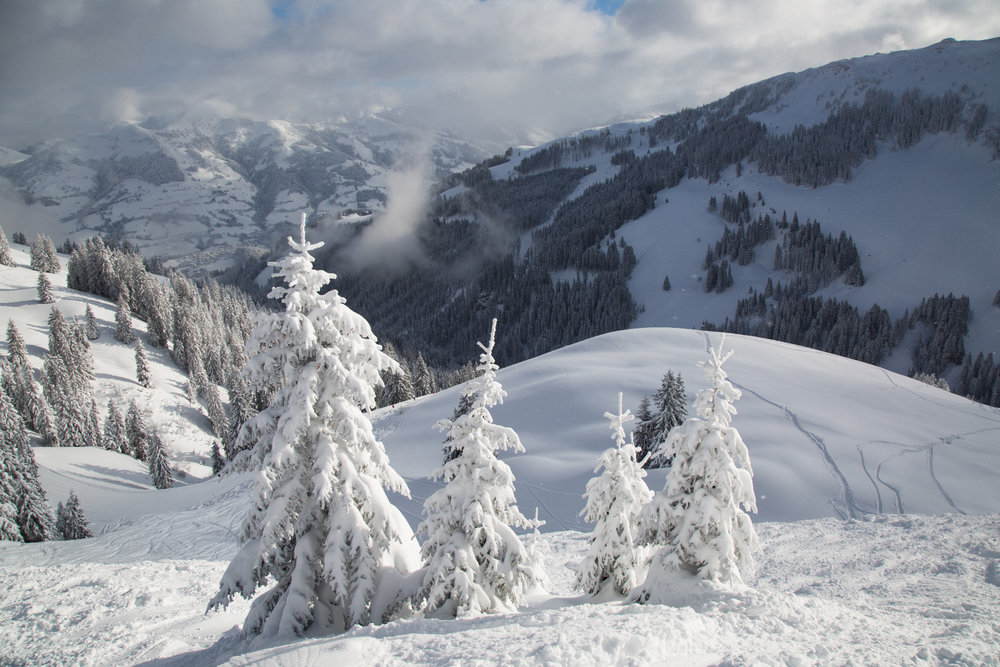 Tolle Schneebedingungen im Januar 2019 in Kitzbühel - © Skiinfo