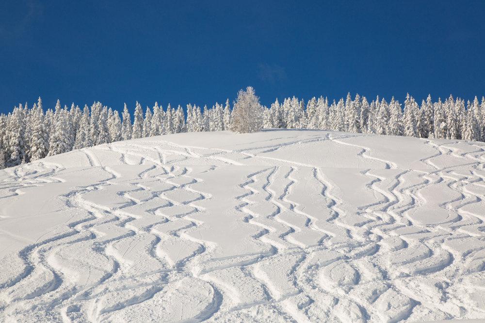 Tiefschneehang im Skigebiet Kitzbühel - © Skiinfo