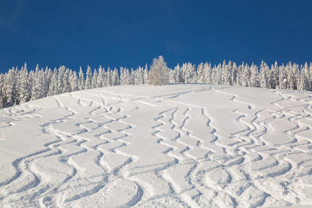 Neve fresca a Kitzbühel 13.1.19 - Amanti del freeride...che ne dite? - © Skiinfo