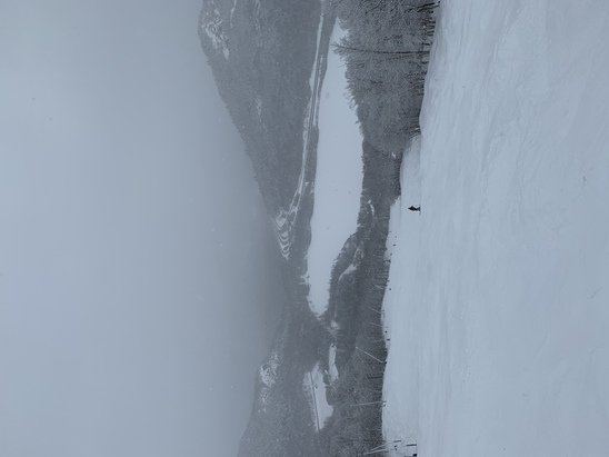 Cannon Mountain - Crazy good for this early in the season! Ungroomed trails are amazing.  - © A