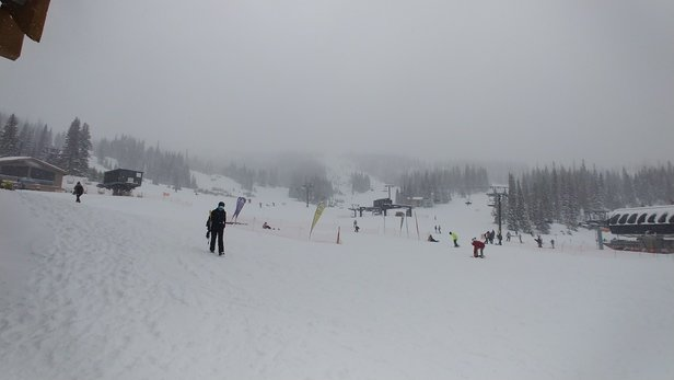 Wolf Creek Ski Area - Snowed all day. Awesome new powder everywhere. - © Nate
