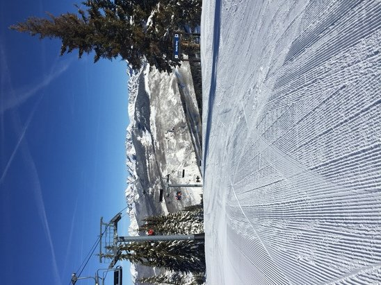 Vail - No wind. Near Perfect pre Christmas conditions. Really amazing skiing right now at Vail - © Epic Pass Holder