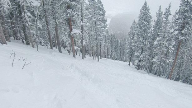 "Angel Fire Resort - Great conditions with 12"" last Friday and Saturday.   - © Bret Mason"