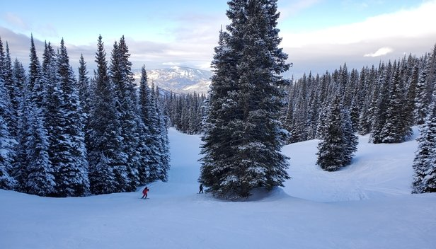 Aspen / Snowmass - New snow from Jan 2 & 3 with powder still to be had in the trees. - © Robert Chang