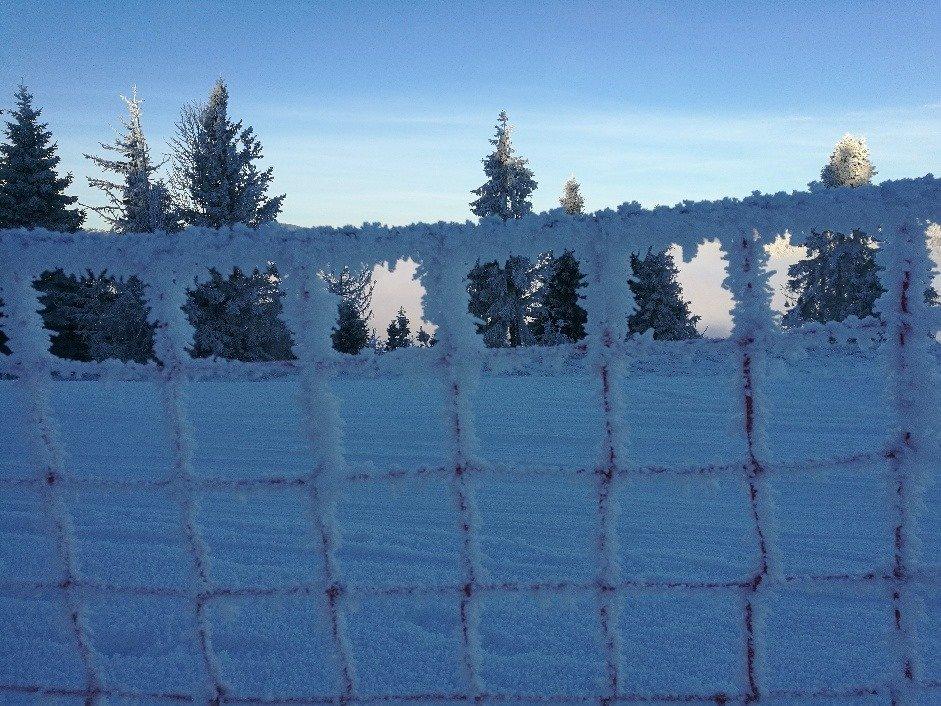 Ski Gugel Mlynky 15.1.2020 - © Ski Gugel Mlynky Facebook