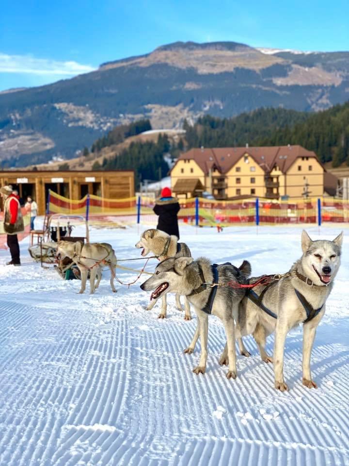 Ski Telgárt 18.1.2020 - © facebook - Ski Telgárt